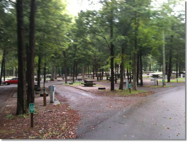 Lebanon rv parks reviews and photos for Cedars of lebanon cabins