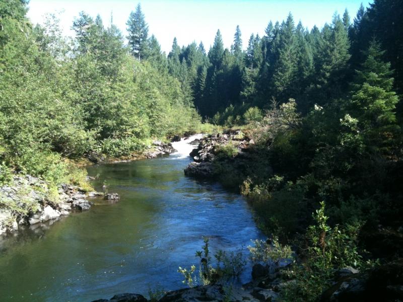 Forest River Rv Reviews >> Prospect RV Parks | Reviews and Photos @ RVParking.com