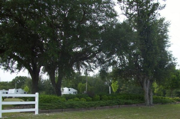 Crystal River Rv Parks Reviews And Photos Rvparking Com