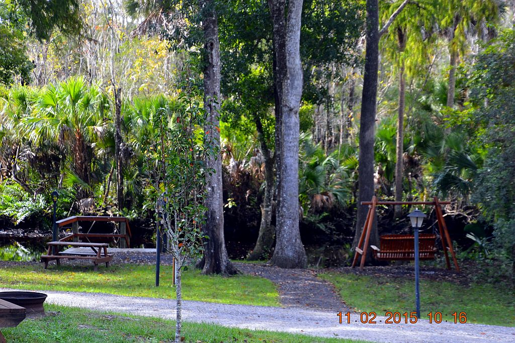 Pellicer Creek Campground St Augustine Fl Rvparking Com