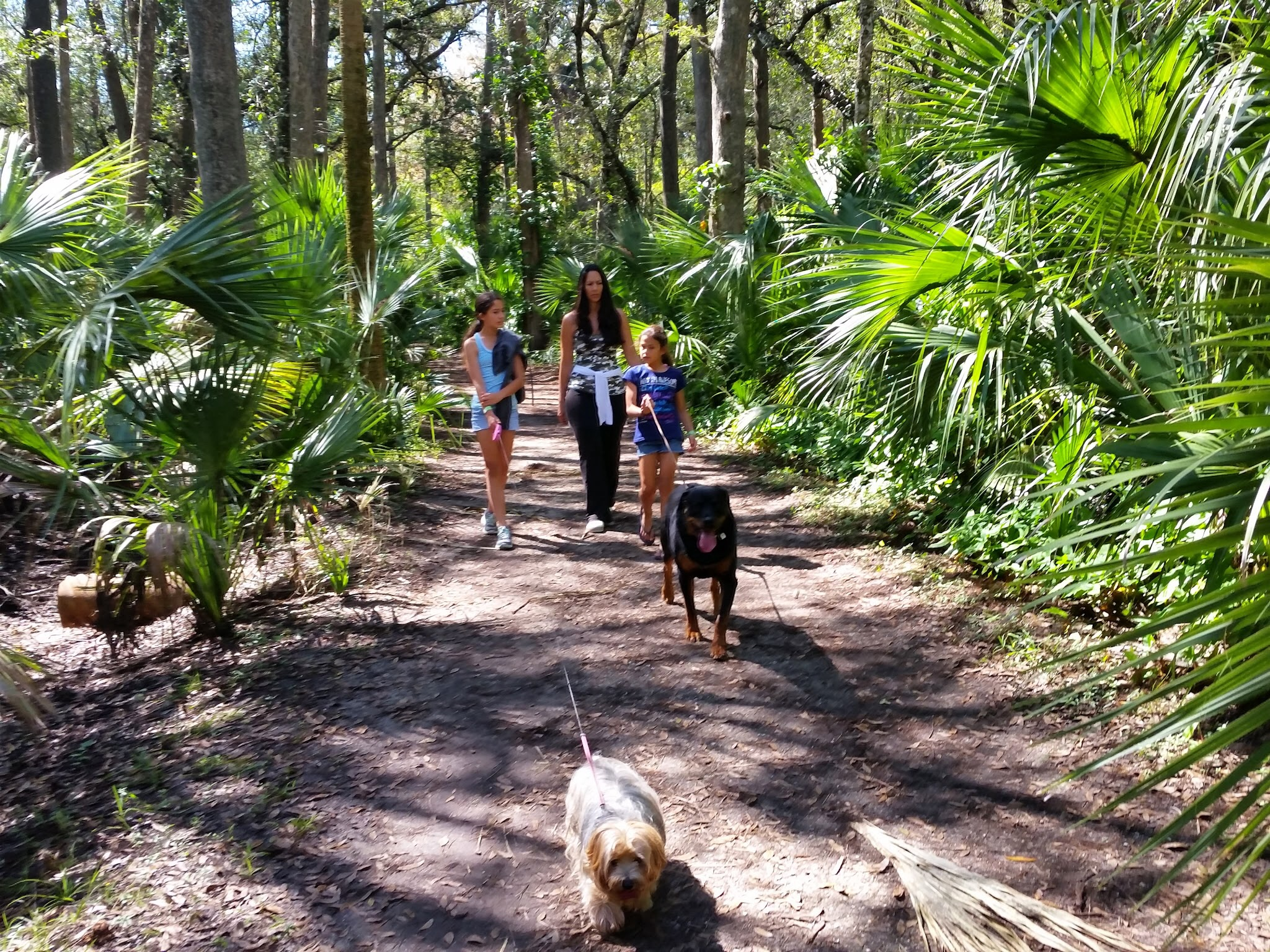 Palmdale rv parks reviews and photos for Fish creek florida