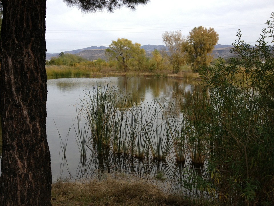 black canyon city chat sites Black canyon rv park and campground includes cabins, rv park, tent sites, and lodge near black canyon of the gunnison, blue mesa lake, silver jack reservoir co.