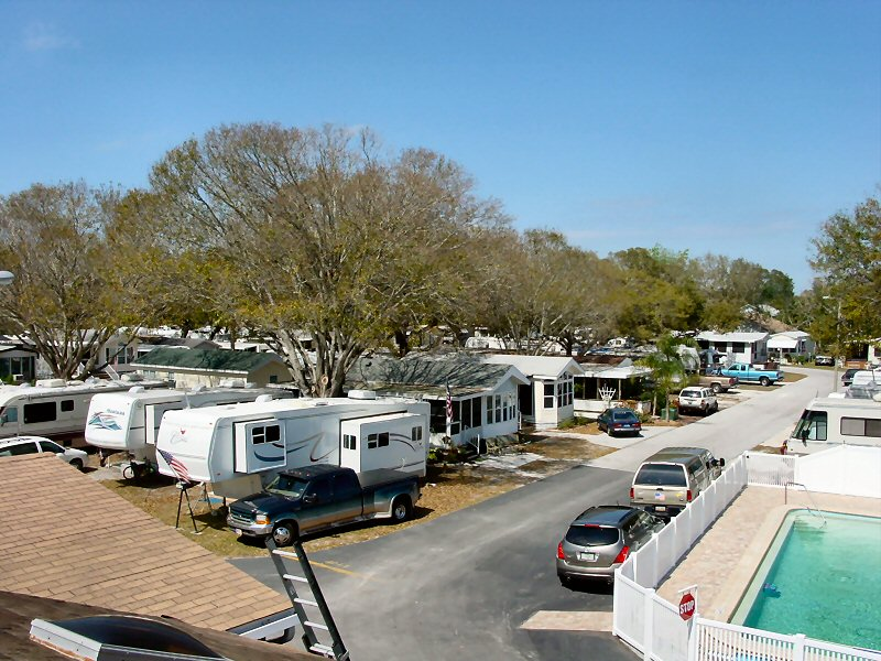 Palm View Rv Park And Campground Palm Harbor Rv Parks