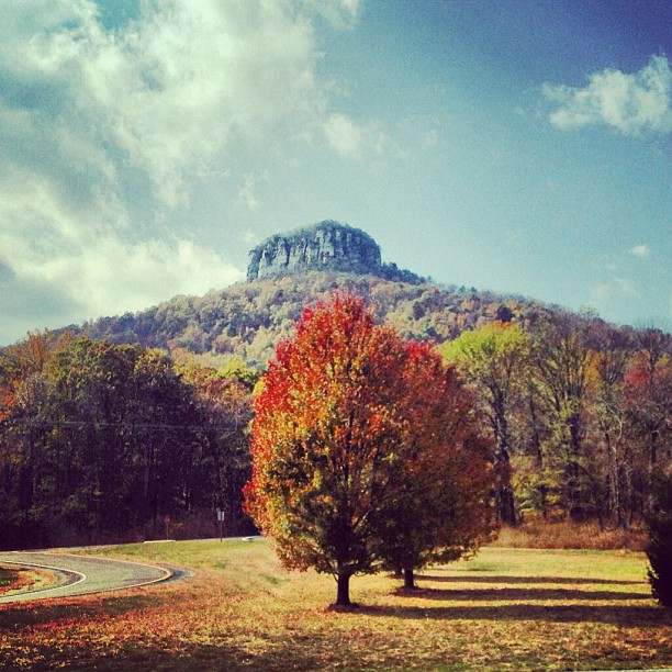 pilot mountain chat sites Meet, chat, & share photos online with people in pilot mountain, nc find dates or start dating online express yourself through photos using oncom.