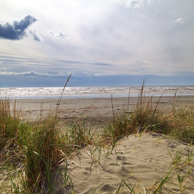Pacific Beach State Park Campground - camping in Washington |Pacific Beach State Park