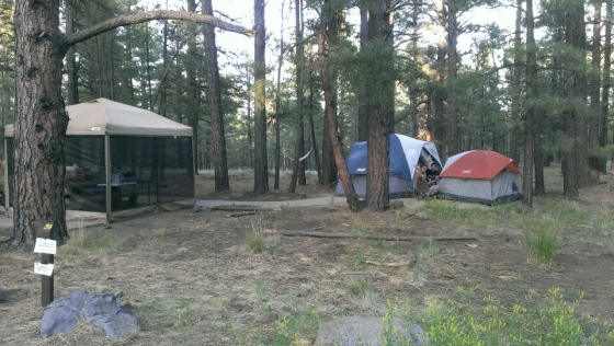 Rv Parks Near Flagstaff Az >> Pinegrove Campground (Coconino National Forest): Photos | RV Parking